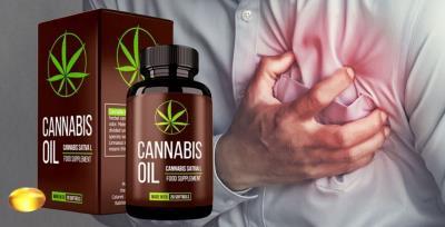 Cannabis Oil pentru hipertensiunea arteriala, ingrediente, prospect
